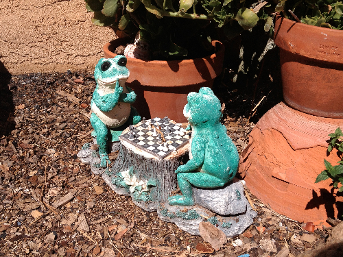frog chess